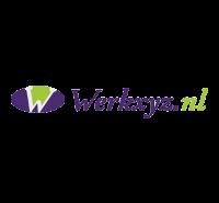Logo WerkXYZ